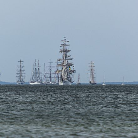 The Tall Ship Races – Szczecin